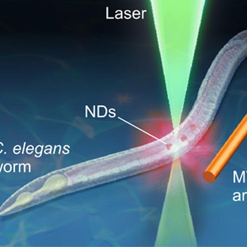 квантовий нанотермоиетр. 1
